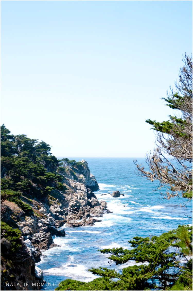Natalie McMullin Photography - Point Lobos 2016 (4 of 9)