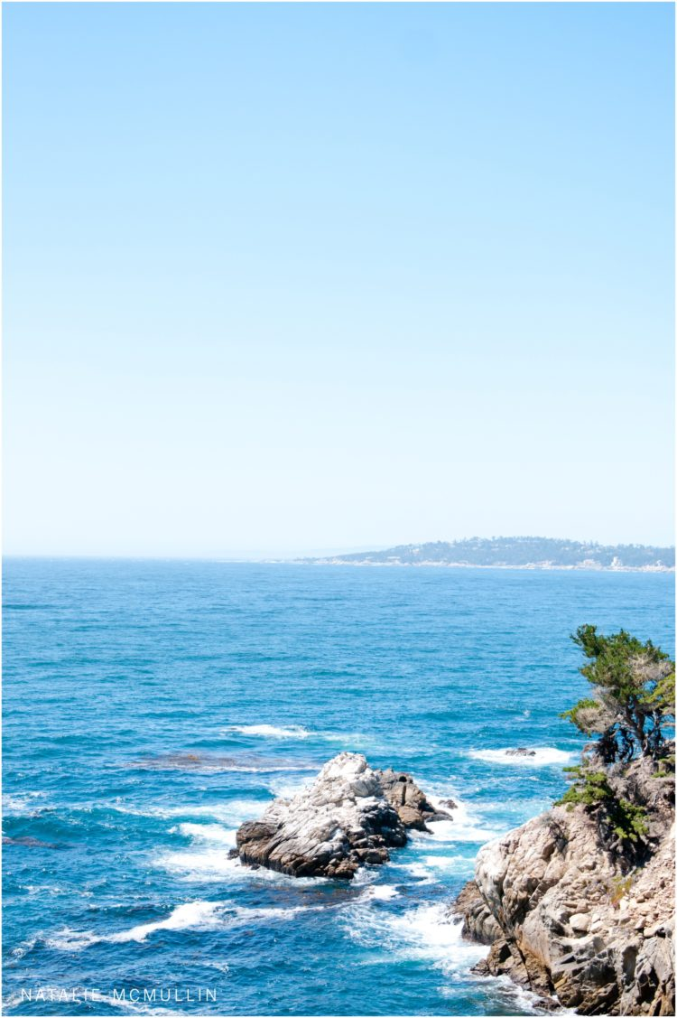 Natalie McMullin Photography - Point Lobos 2016 (5 of 9)