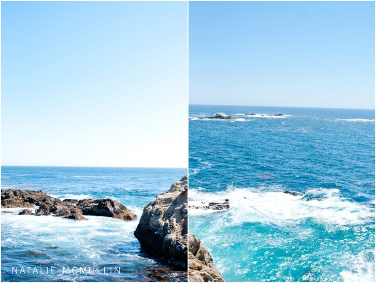 Natalie McMullin Photography - Point Lobos 2016 (7 of 9)