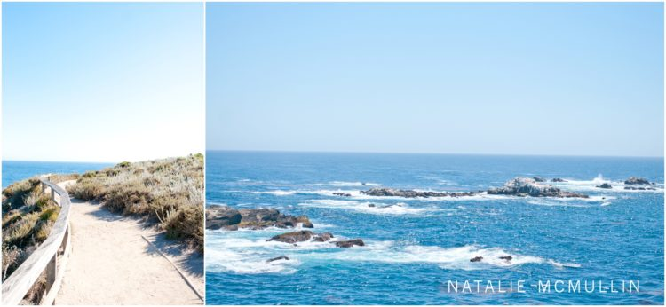 Natalie McMullin Photography - Point Lobos 2016 (8 of 9)