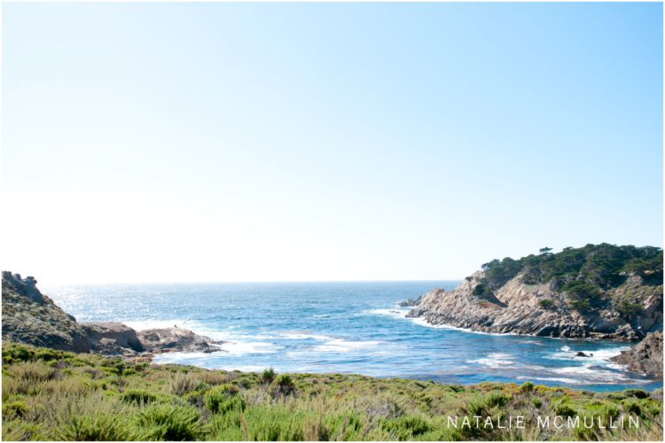 Natalie McMullin Photography - Point Lobos 2016 (9 of 9)